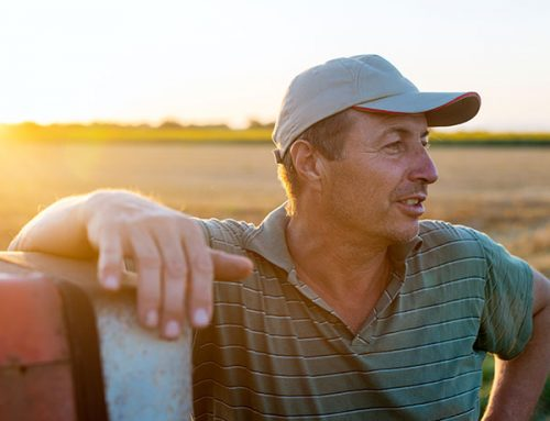 The Future of Dairy Farmers in Queensland